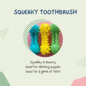 Squeaky Chew Toy