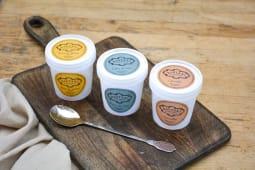 Pack découverte de 3 glaces artisanales persanes