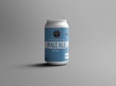 9MTA Pale Ale  4.5% 355ml