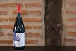 Vino Pardevalles DO LEON (750 ml.)