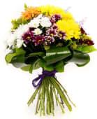 Buchet din 11 crizanteme mix