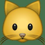 Pets – Catisfactions per il tuo gatto (solo 1 pezzo per ordine)