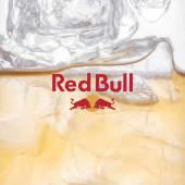 Red Bull (250мл)