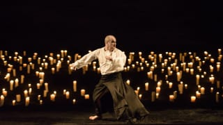 The Guardian called Saul 'one of Glyndebourne's finest shows of recent years'.