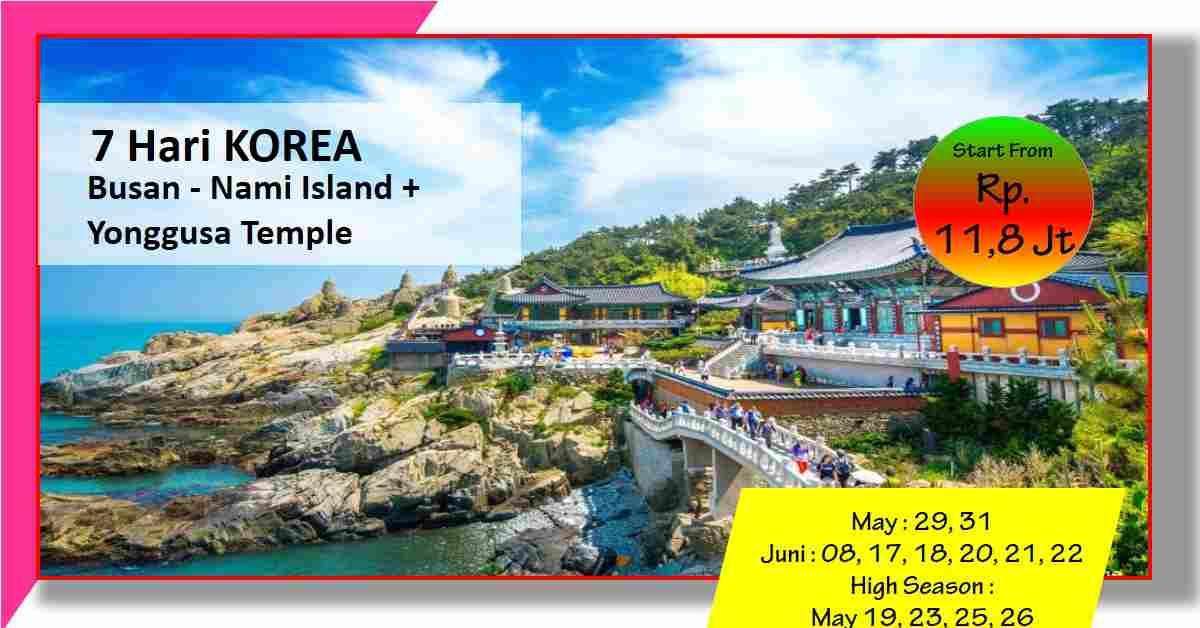 jual 7D YONGGUNGSA TEMPLE -+ Seoul Busan - Nami Island May - Juni 2020