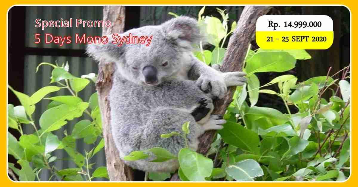 5D Mono Sydney 21 - 25 September 2020