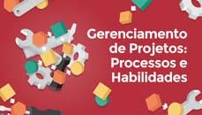 Gerenciamento de Projetos: Processos e Habilidades (Project management processes)