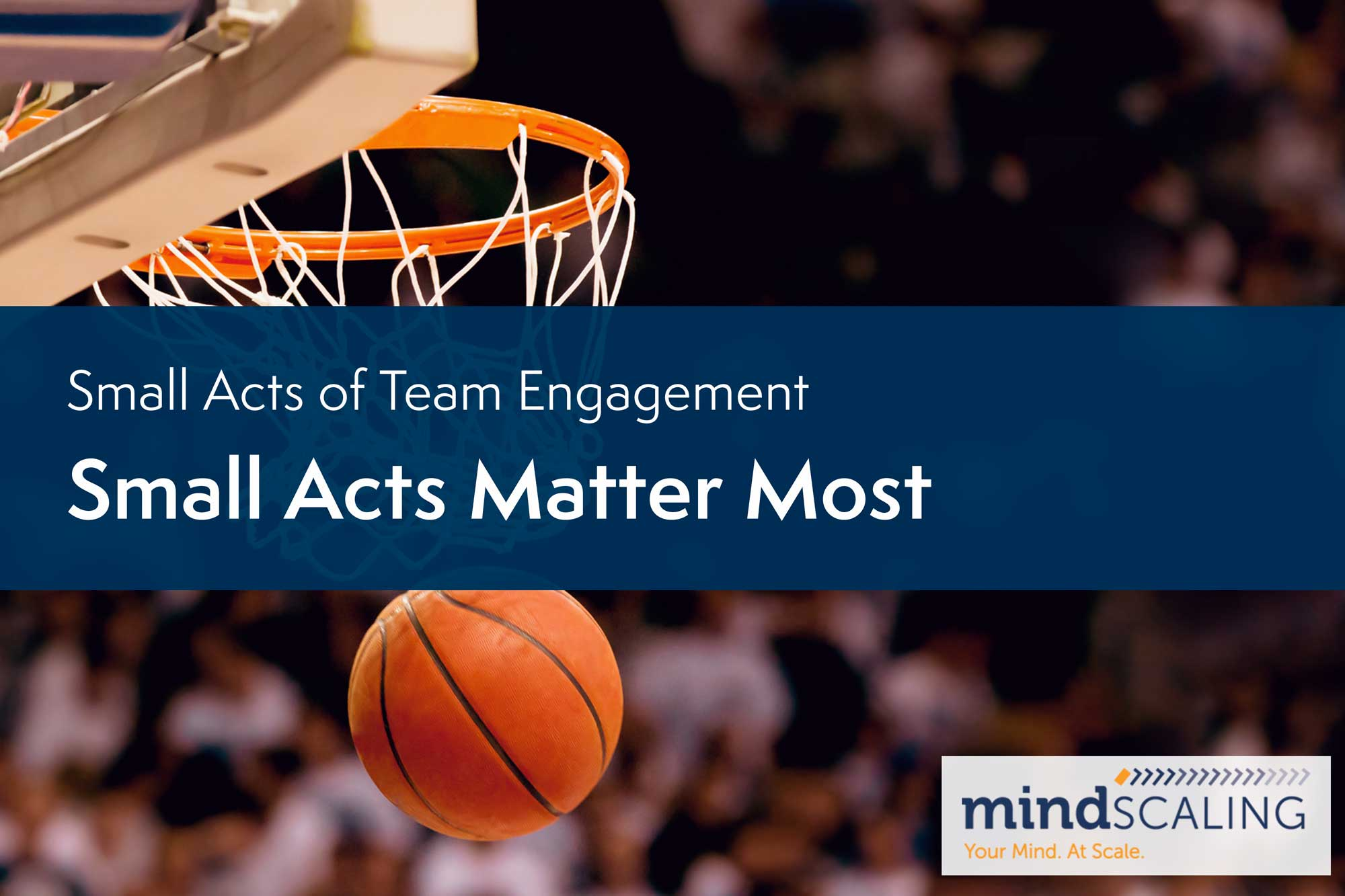 Small Acts of Team Engagement: Small Acts Matter Most image