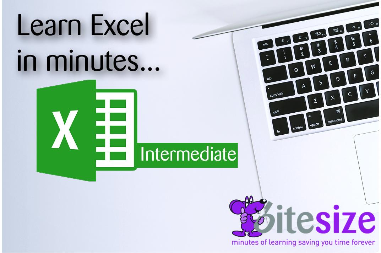 MS Excel 2016 - Intermediate image