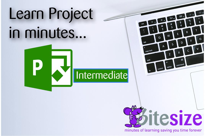 MS Project 2016 - Intermediate