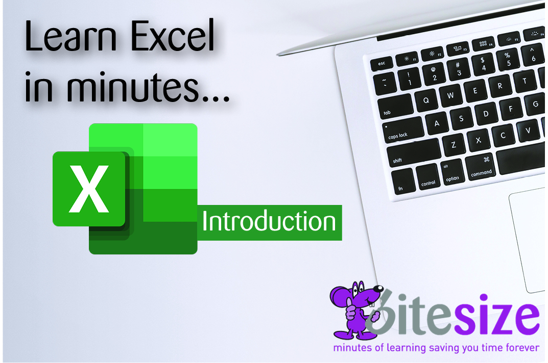 MS Excel 2019 - Introduction