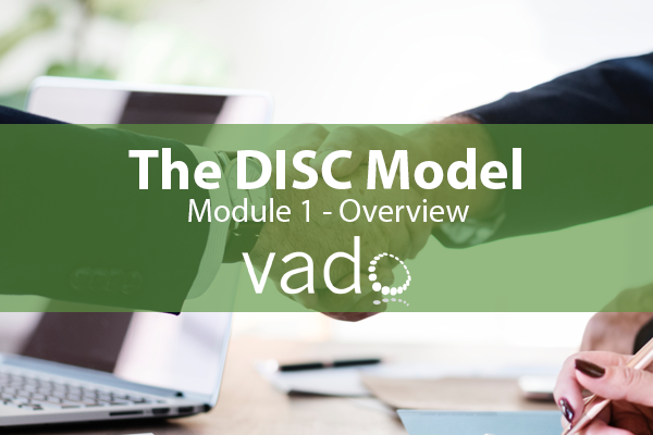 DISC Model Overview image