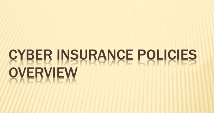 Cyber Risk Insurance Overview