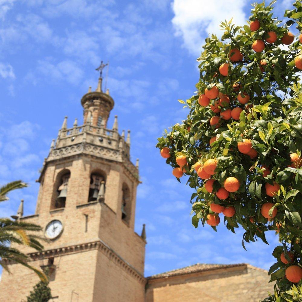 Managing in Spain