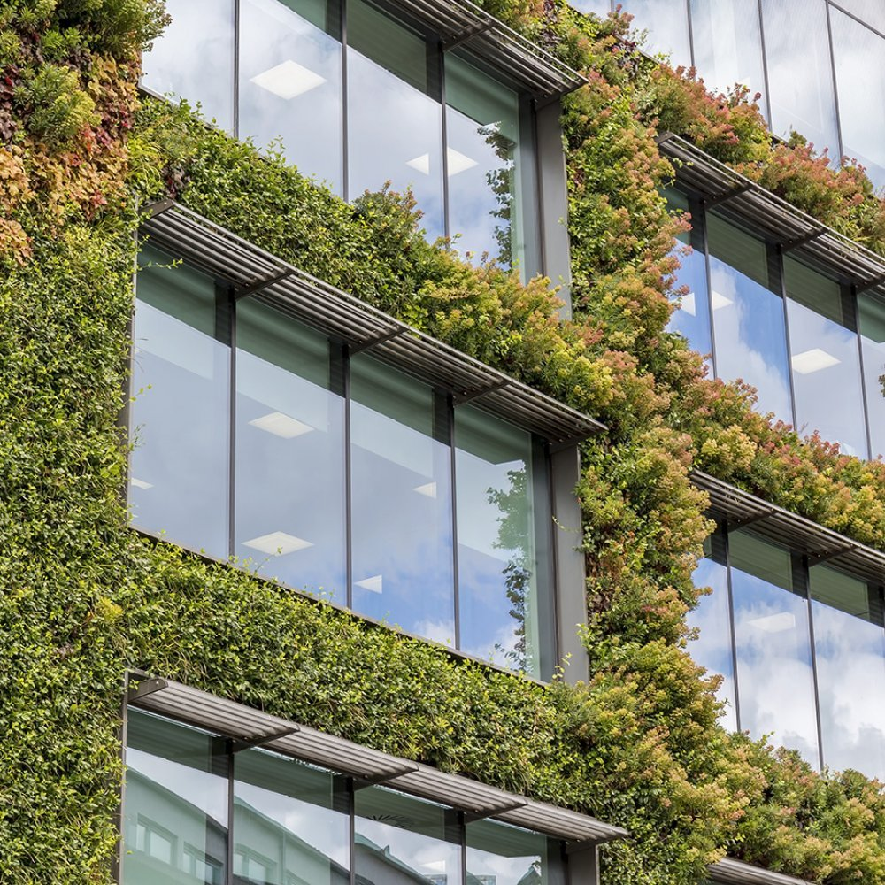 Green Management image