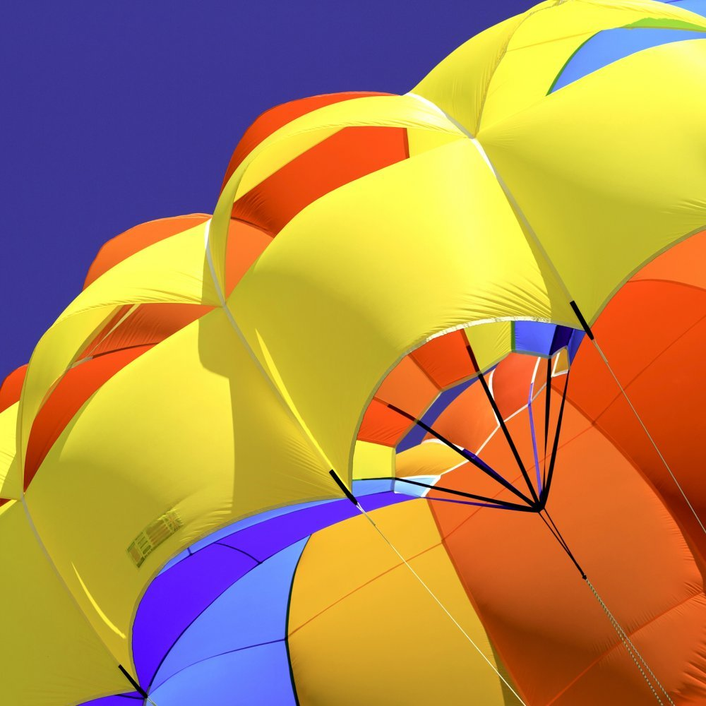 What Color Is Your Parachute? (2019 edn)