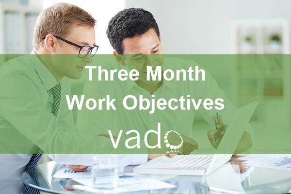 Three Month Work Objectives