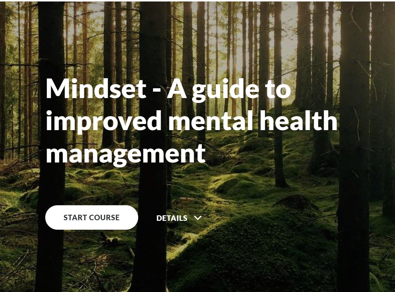Mindset: A guide to improved mental health management