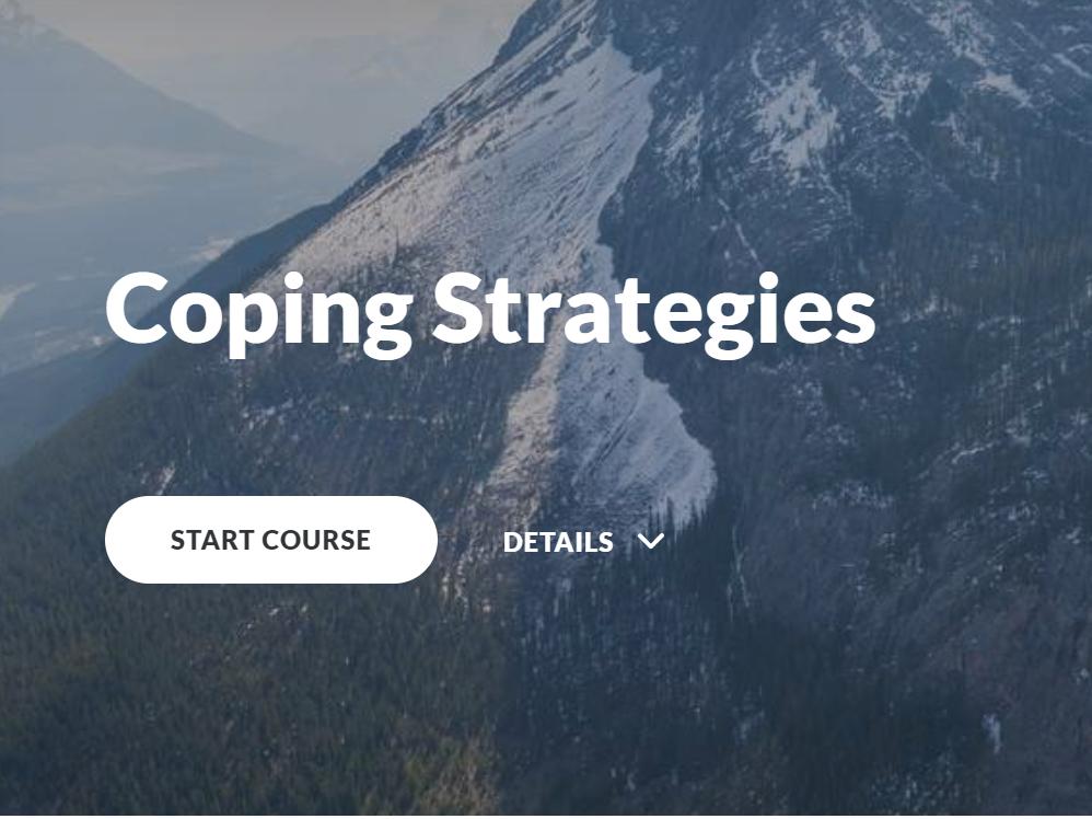 Coping Strategies
