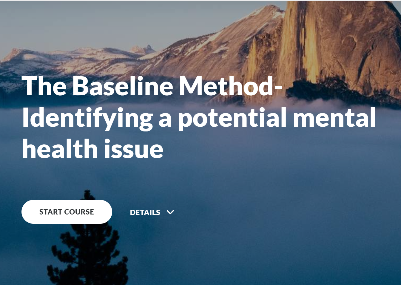 The Baseline Method: Identifying a potential mental health issue image