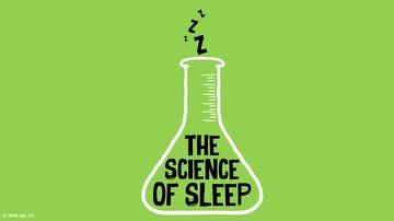 The Science of Sleep: How Much Sleep Do You Need? image
