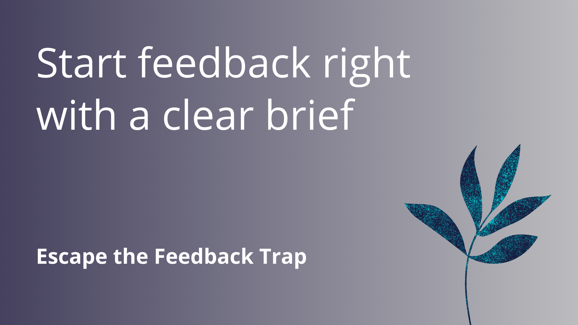 Start feedback right with a clear brief