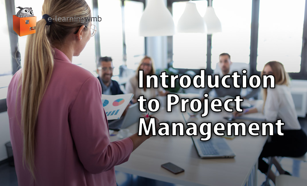 Introduction to Project Management image