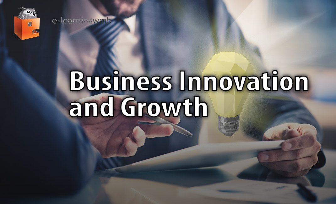 Business Innovation and Growth
