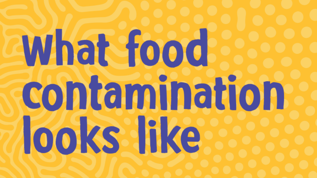 What food contamination looks like