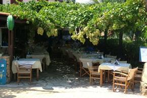 Giannis Taverna ,