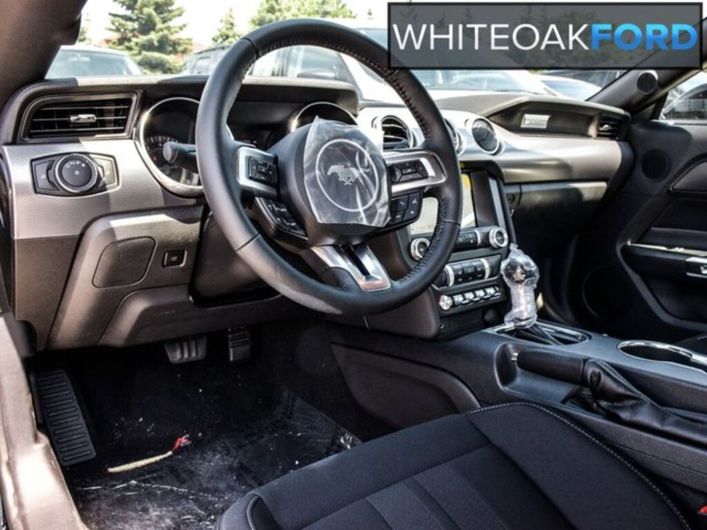 2019 Ford Mustang EcoBoost for sale in Mississauga, Ontario