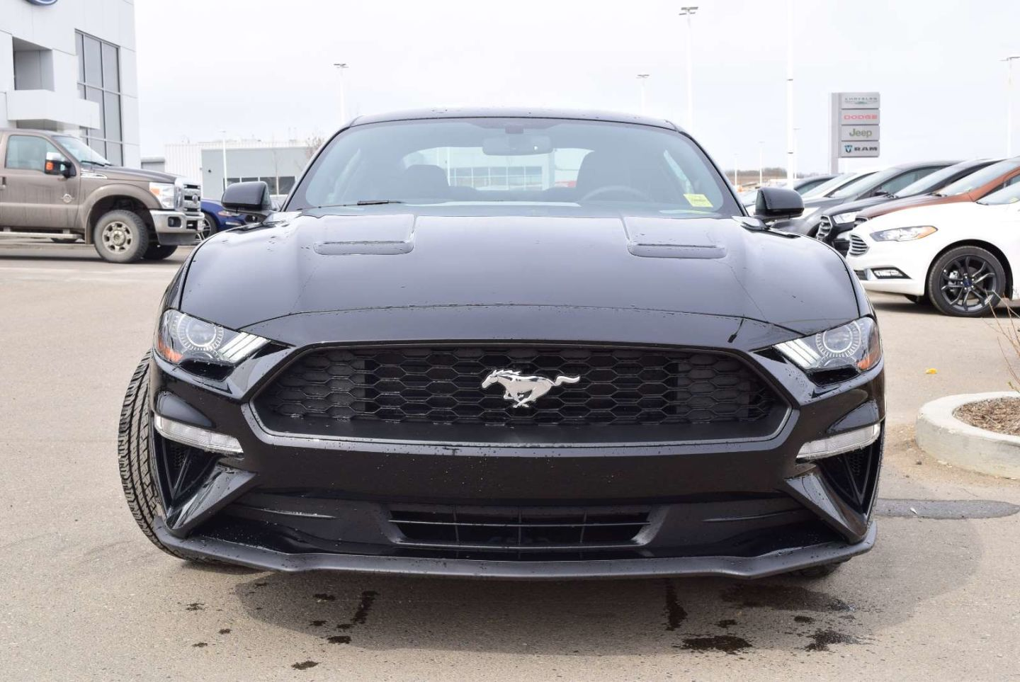 2019 Ford Mustang EcoBoost for sale in Peace River, Alberta