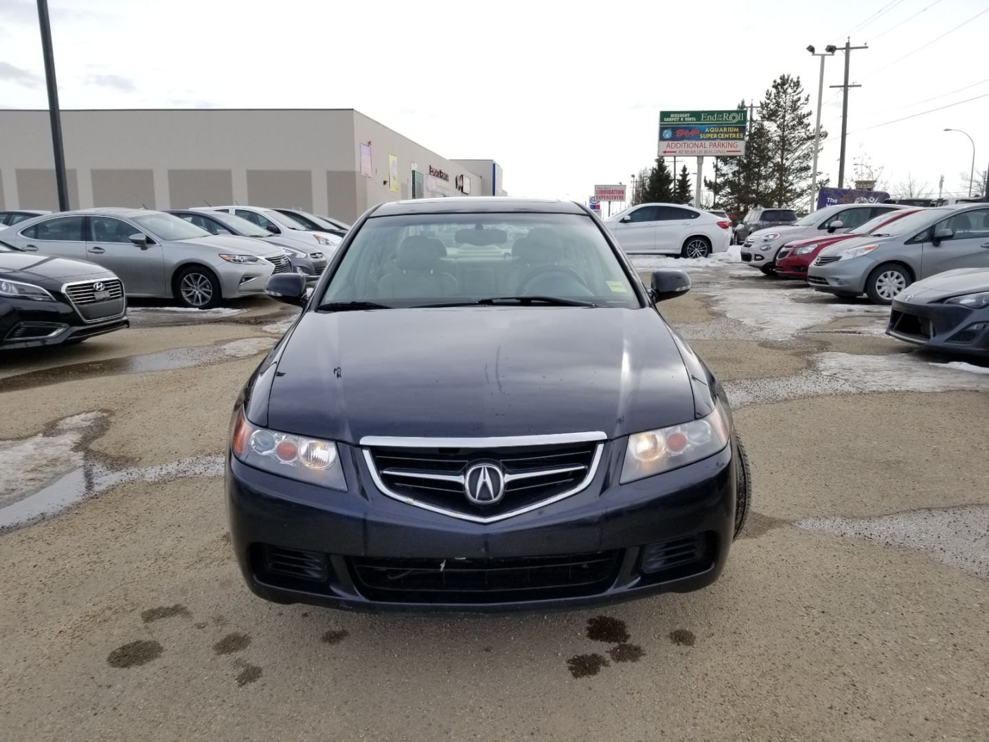 2004 Acura TSX  for sale in ,