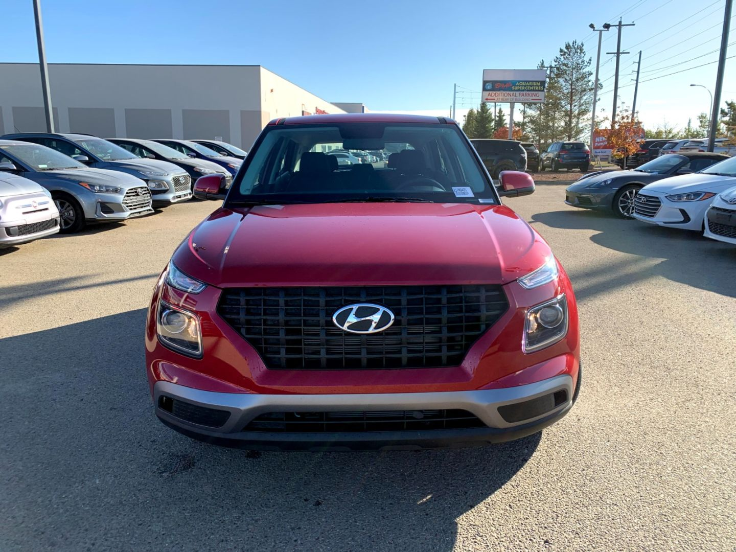2021 Hyundai Venue Essential for sale in Edmonton, Alberta