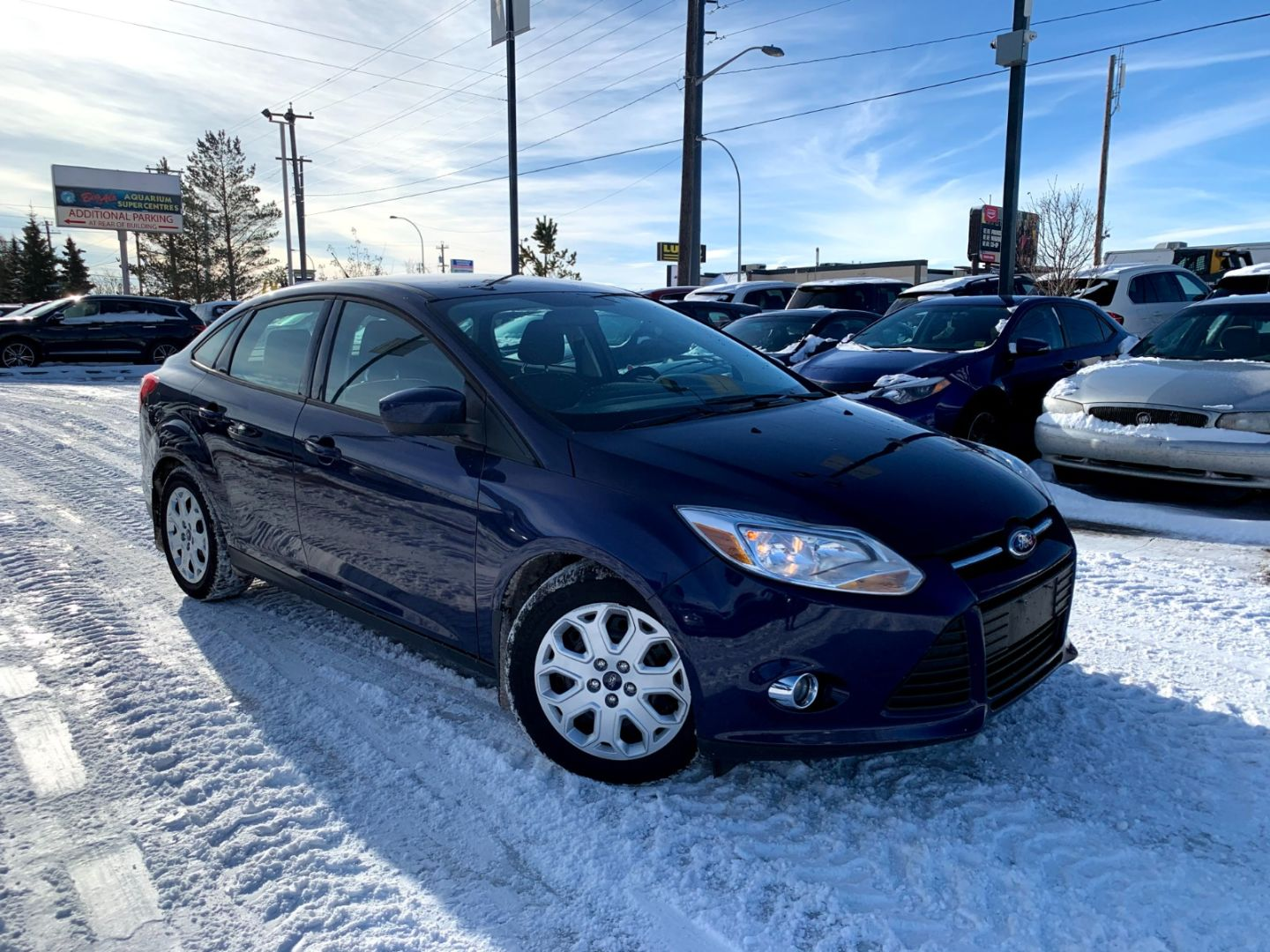 2012 Ford Focus SE for sale in Edmonton, Alberta