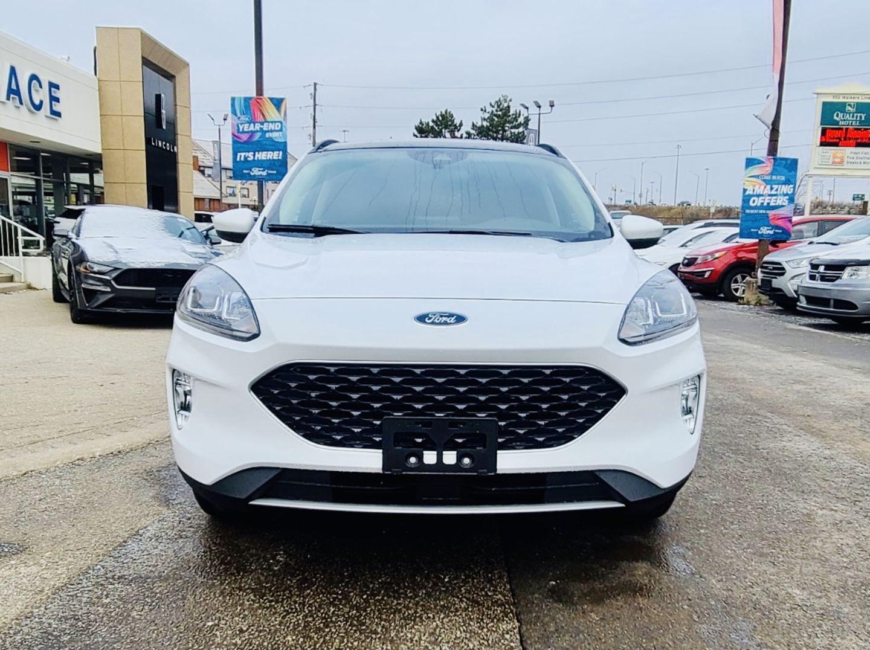 2020 Ford Escape SEL for sale in Burlington, Ontario