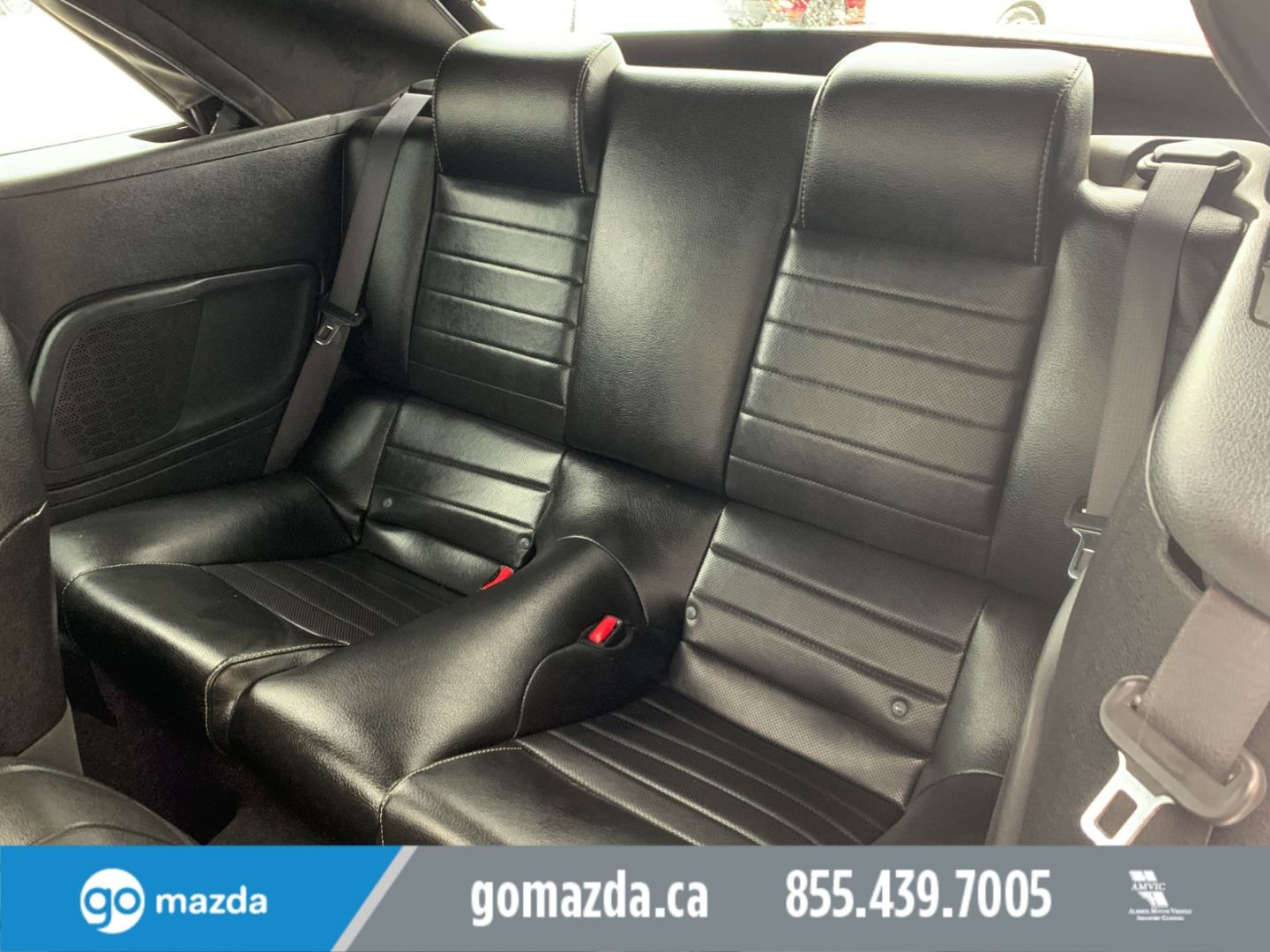 2010 Ford Mustang GT for sale in Edmonton, Alberta