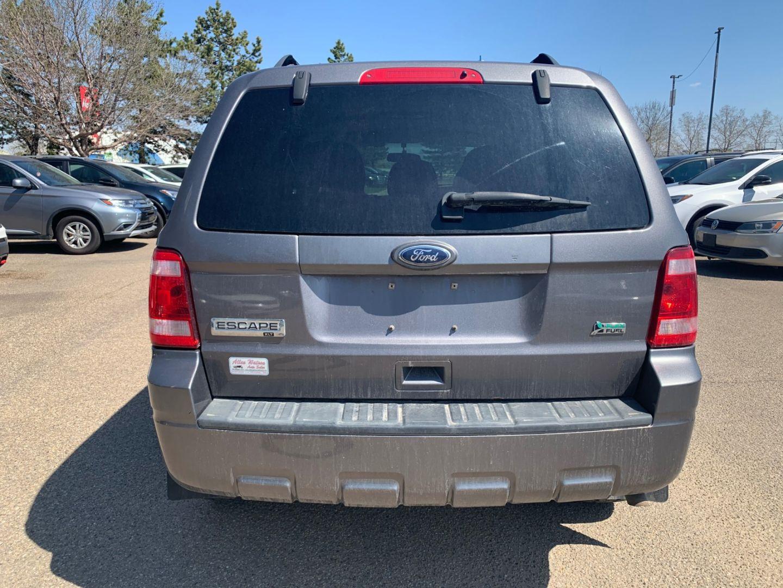 2010 Ford Escape XLT for sale in Edmonton, Alberta