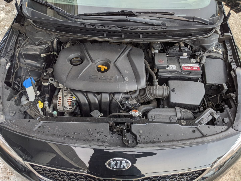 2018 Kia Forte5 LX+ for sale in Edmonton, Alberta