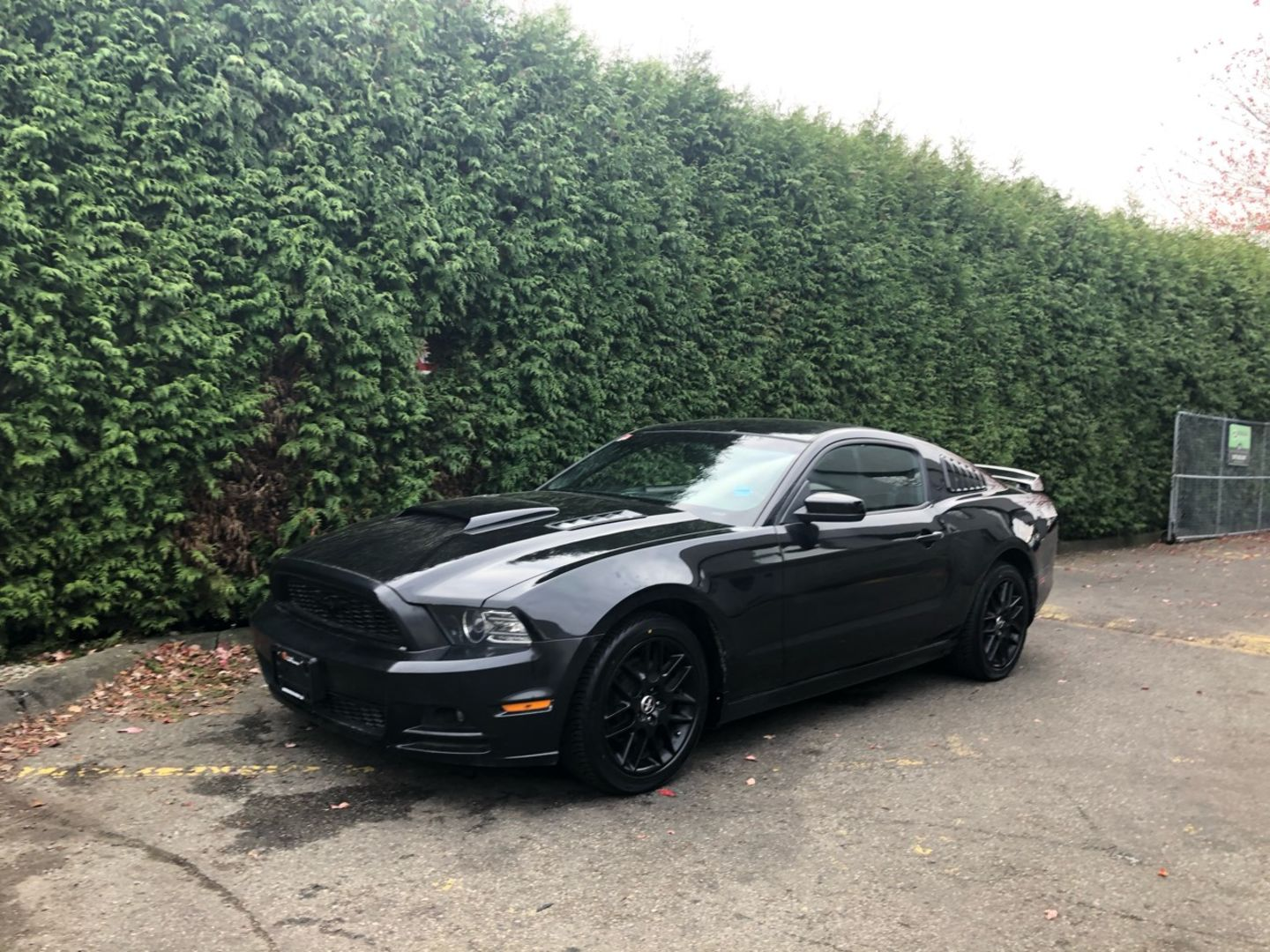 2014 Ford Mustang V6 for sale in Surrey, British Columbia