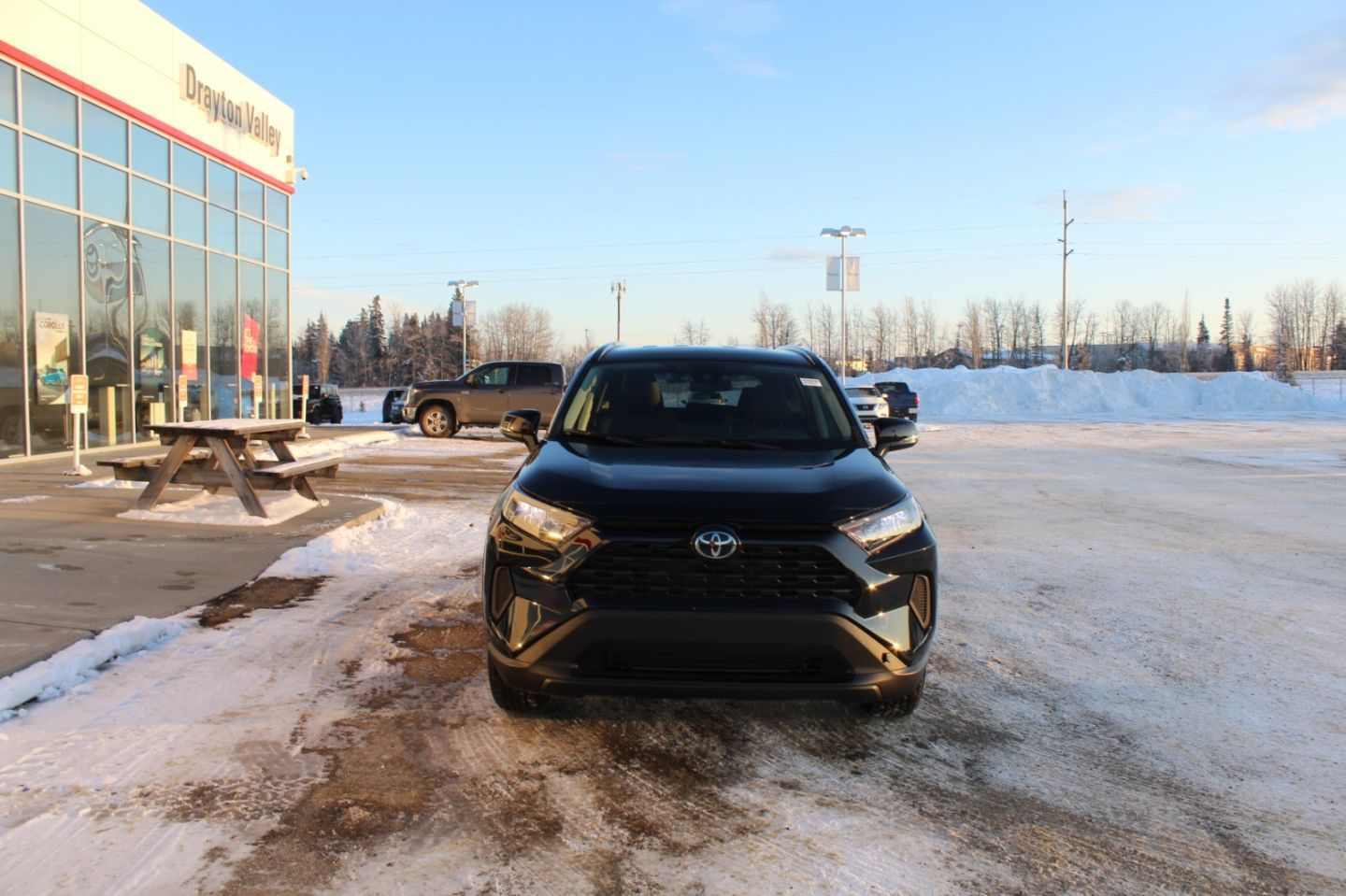 2019 Toyota RAV4 LE for sale in ,