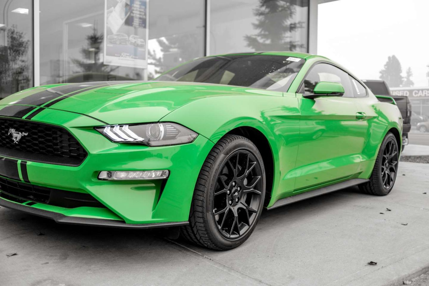 2019 Ford Mustang EcoBoost Premium for sale in Edmonton, Alberta
