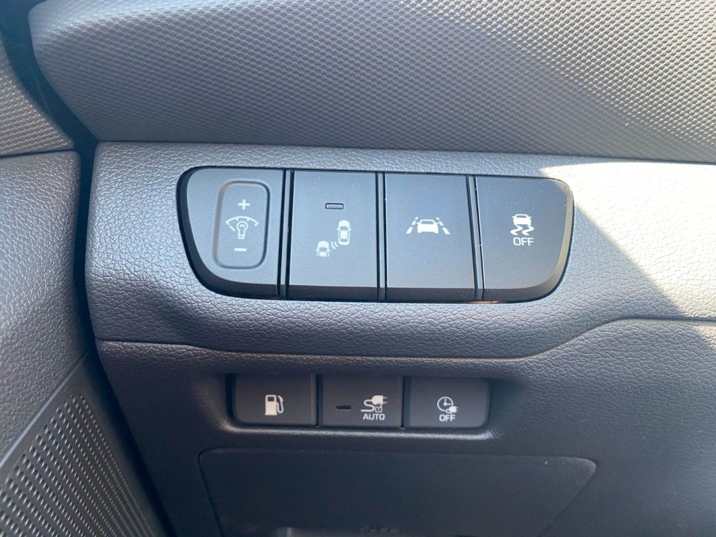 2021 Hyundai IONIQ Electric Plus Preferred for sale in Edmonton, Alberta