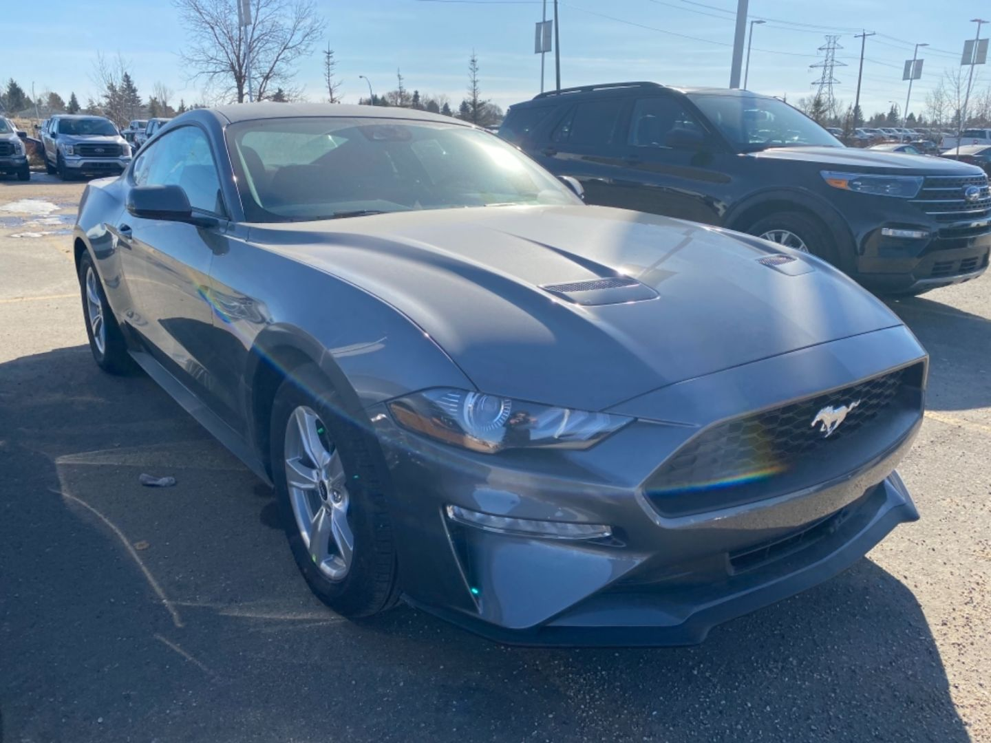 2021 Ford Mustang EcoBoost for sale in Edmonton, Alberta