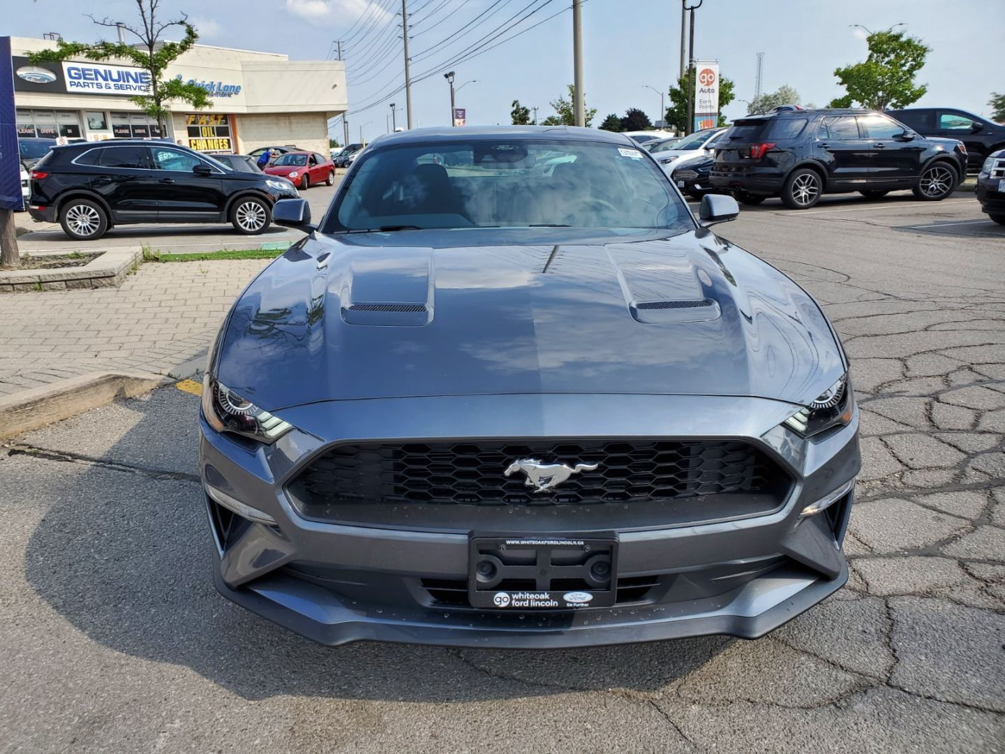 2021 Ford Mustang EcoBoost for sale in Mississauga, Ontario