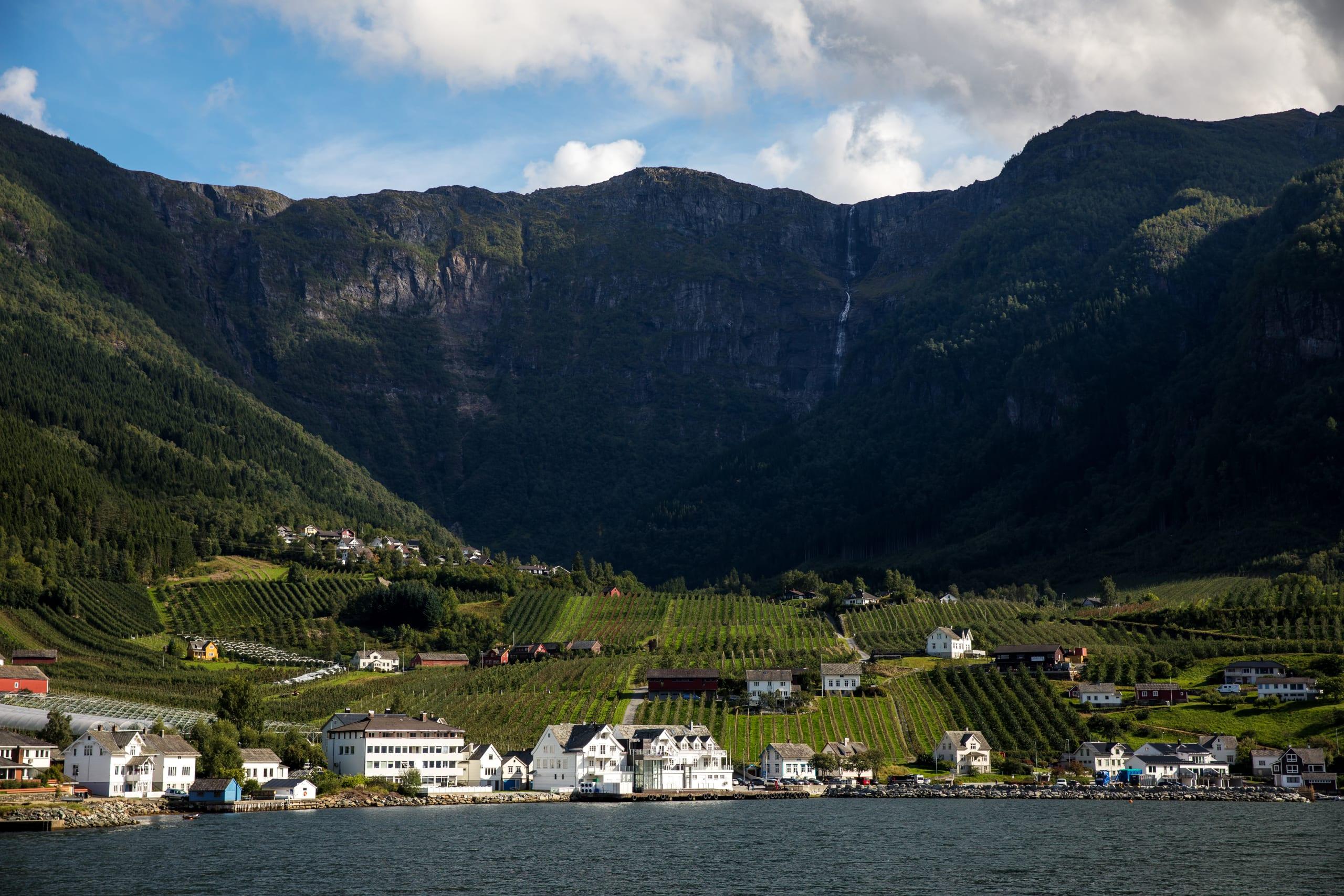 Fjord village along the Hardangerfjord
