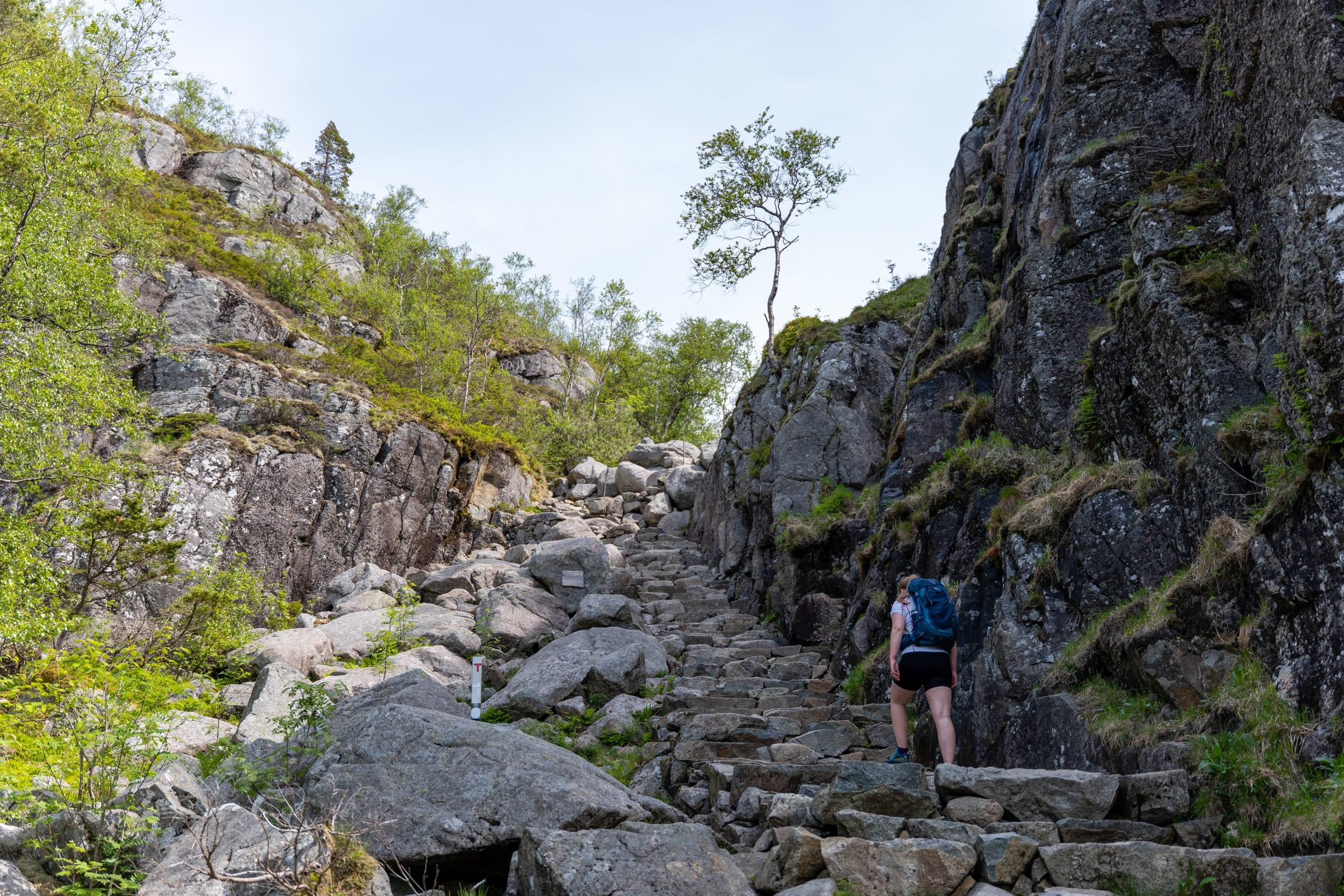 Neverdal ravine on the path to Preikestolen
