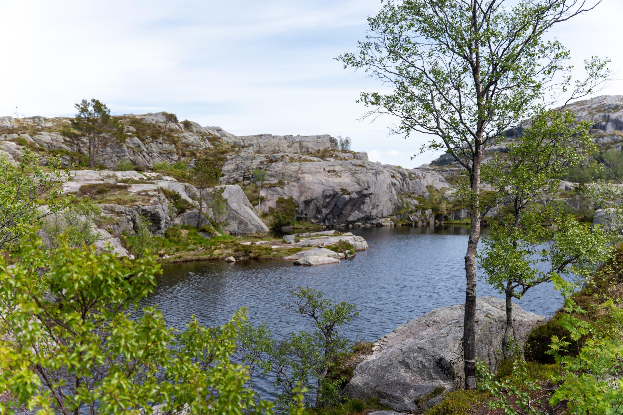 Tjødnane mountain water on the path to Preikestolen
