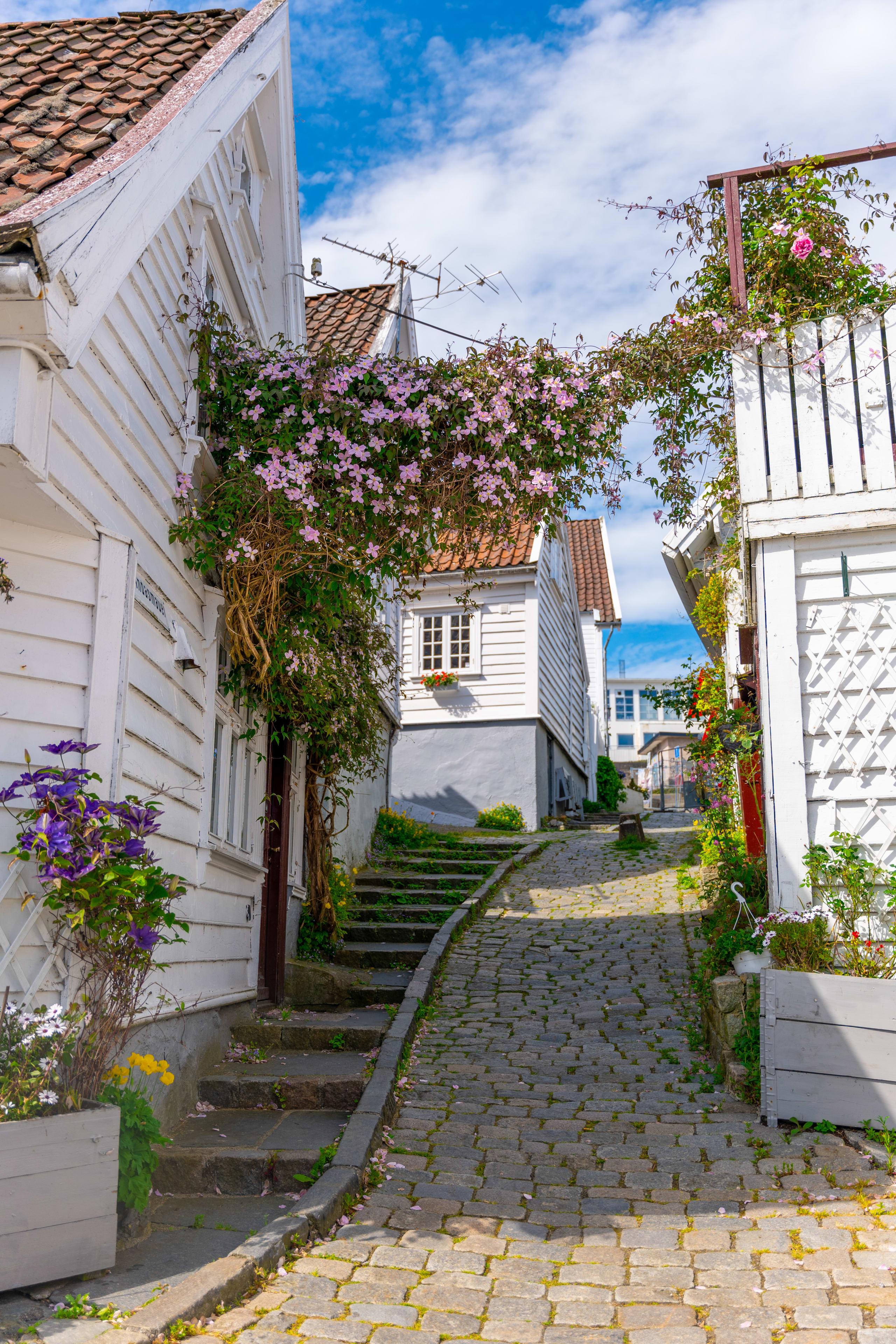 Flower gate in Old Stavanger