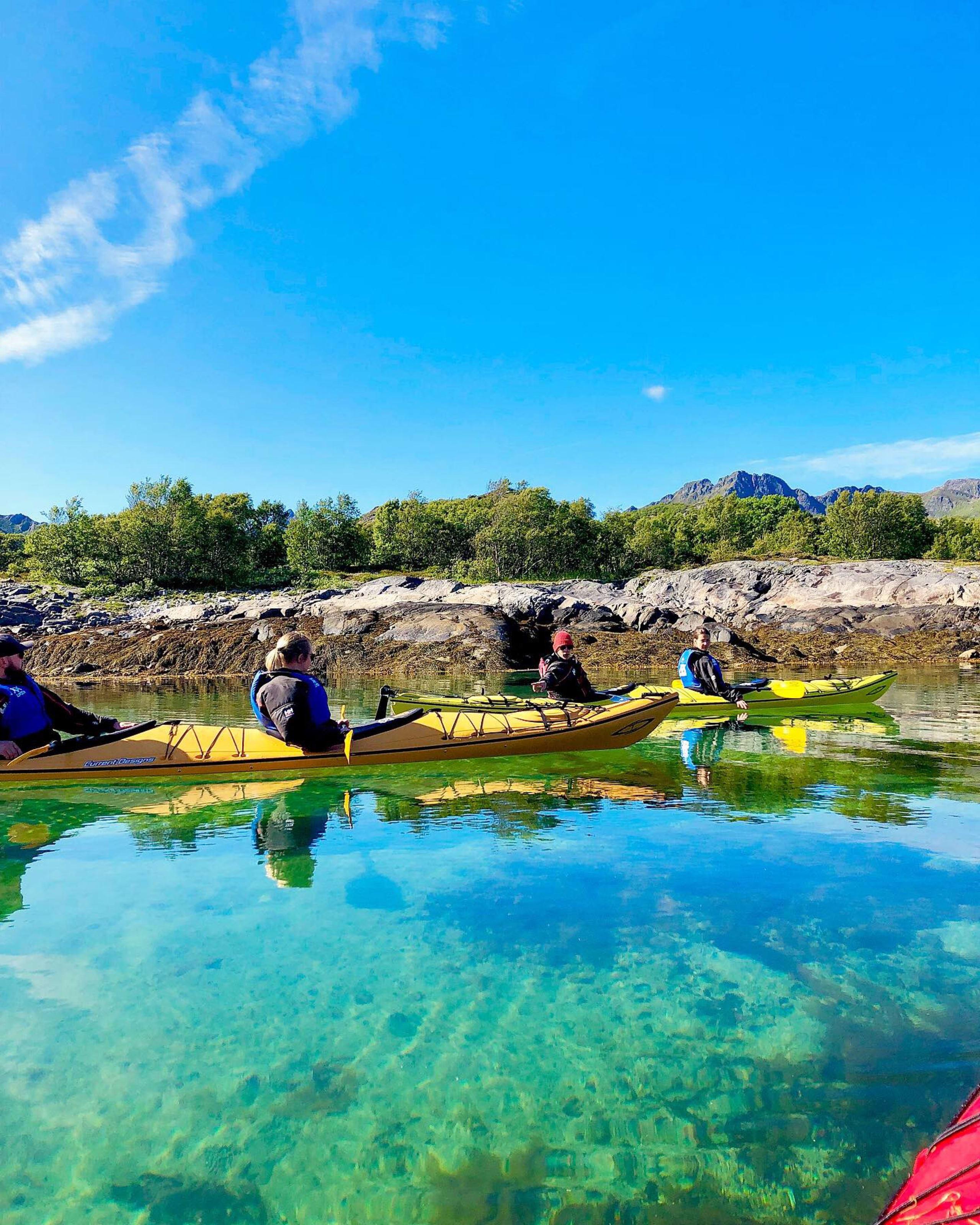 Nature kayak safari in Lofoten